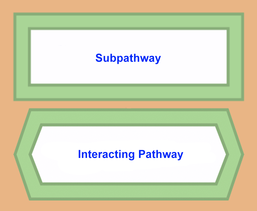 subpathways interacting